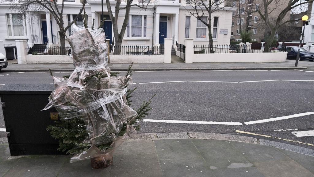 Ex-mas trees nu