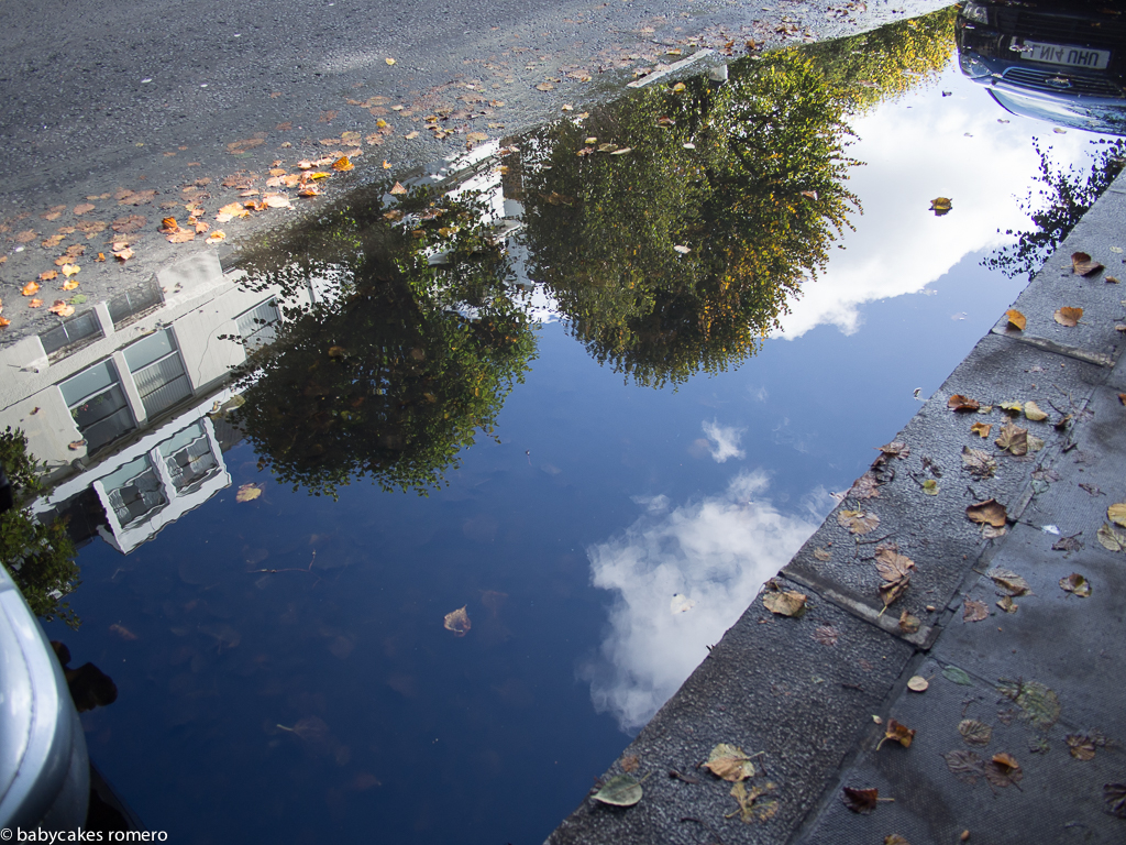parallel portal puddles-5